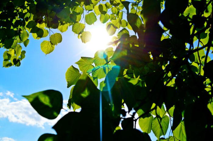 Солнце в счастливых глаза